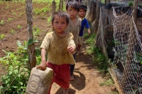 Foto de Children from a village in Central Highlands - Vietnam
