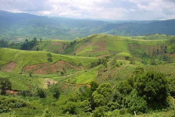 Send picture of The lush and green landscape of the Central Highlands from Vietnam as a free postcard