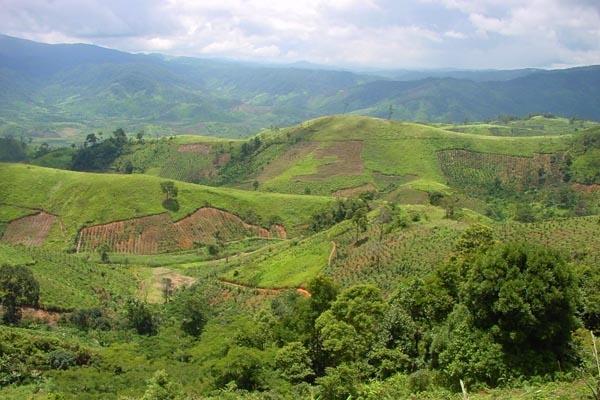 Envoyer photo de The lush and green landscape of the Central Highlands de Vietnam comme carte postale électronique