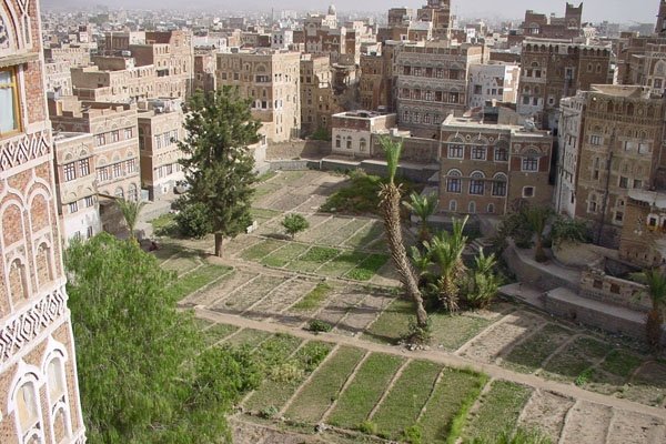 Send picture of Houses and some of the many gardens of Sanaa from Yemen as a free postcard