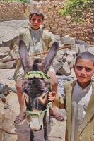 Photo de Yemeni boys and donkey - Yemen