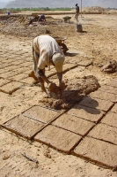 Foto de Man making bricks in Wadi Hadramawt - Yemen