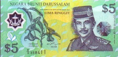 Image of money from Brunei